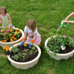 Garden, Mini Set of 3